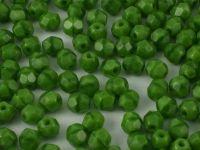 FP 4mm Green Coral - 40 sztuk