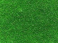 PRECIOSA Rocaille 11o-Medium Green - 50 g