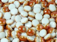 Candy 8mm Alabaster Apricot Medium - 10 sztuk
