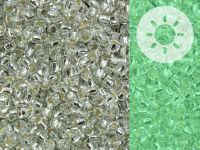 TOHO Round 11o-PF2700S Glow In The Dark - Permanent Finish Silver-Lined Crystal - Green Splash - 10 g