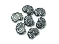 Ammonite Beads Hematite 17x13 mm - 2 sztuki