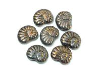 Ammonite Beads Iris Purple-Brown 17x13 mm - 2 sztuki