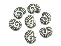 Ammonite Beads Green-Brown - Silver Inlay 17x13 mm - 2 sztuki
