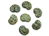 Ammonite Beads Jet Picasso 17x13 mm - 2 sztuki