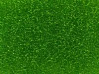 PRECIOSA Rocaille 10o-Lt Green - 50 g