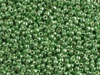 TOHO Round 11o-PF587 Permanent Finish - Galvanized Green Apple - 10 g