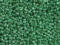 TOHO Round 11o-PF588 Permanent Finish - Galvanized Spring Green - 10 g