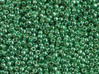 TOHO Round 11o-PF588 Permanent Finish - Galvanized Spring Green - 10 g